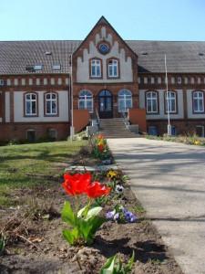 Schule im Frühjahr 2015